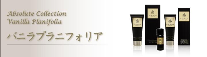 バニラプラ二フォリアイメージ画像
